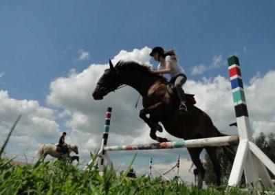 oboz-konie-2014-4-0057