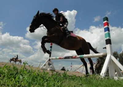 oboz-konie-2014-4-0058