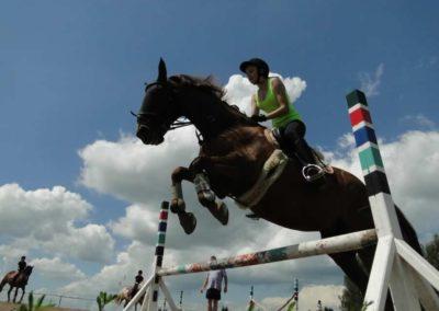 oboz-konie-2014-4-0059