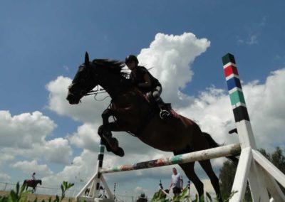 oboz-konie-2014-4-0060