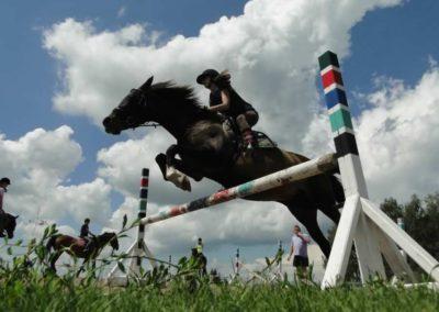 oboz-konie-2014-4-0061