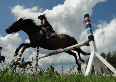 oboz-konie-2014-4-0062