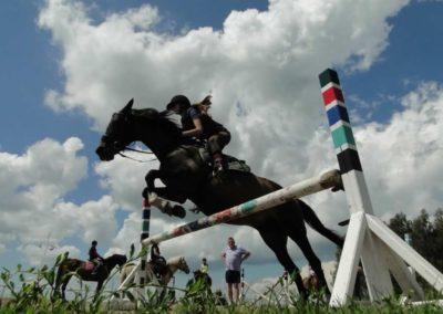oboz-konie-2014-4-0063
