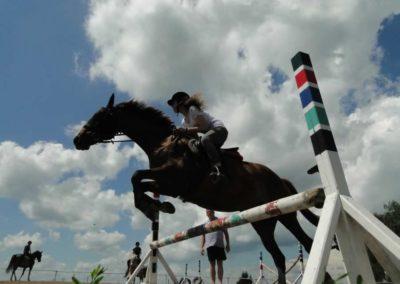 oboz-konie-2014-4-0064