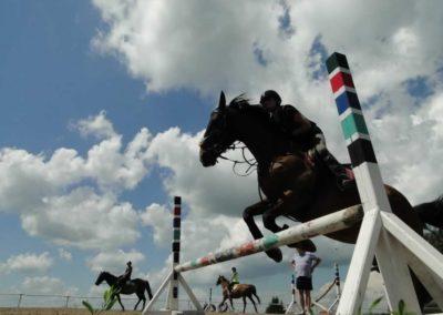 oboz-konie-2014-4-0065