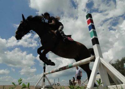 oboz-konie-2014-4-0066