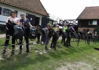 oboz-konie-2014-4-0071