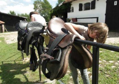 oboz-konie-2014-4-0073