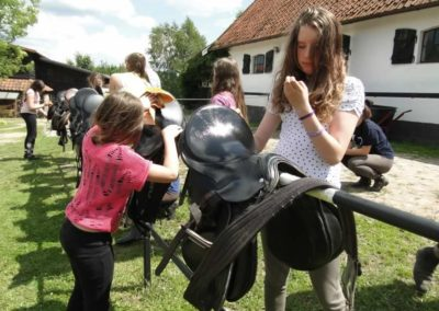 oboz-konie-2014-4-0076