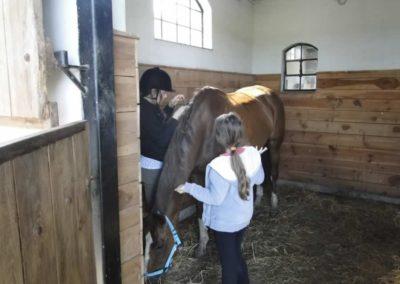 oboz-konie-2014-4-0079