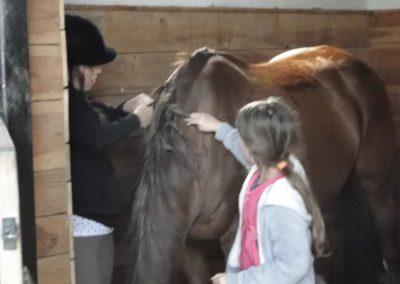 oboz-konie-2014-4-0081