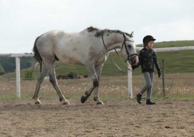 oboz-konie-2014-4-0085