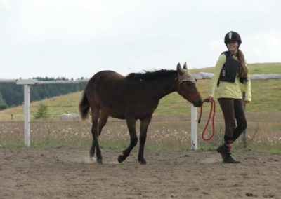 oboz-konie-2014-4-0086