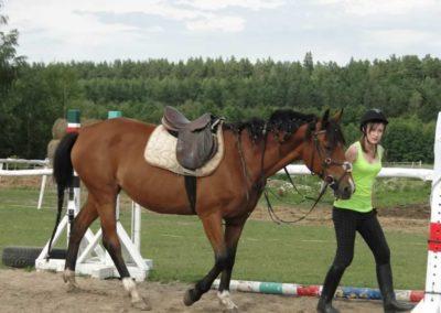 oboz-konie-2014-4-0093