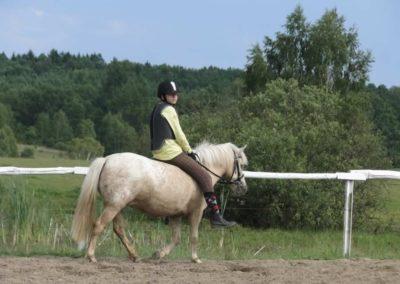 oboz-konie-2014-4-0097
