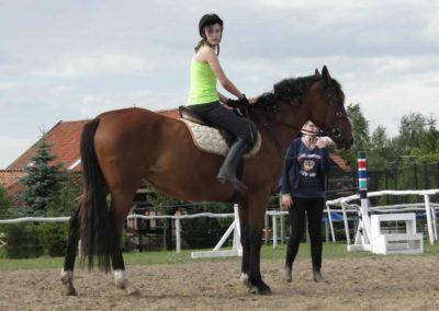 oboz-konie-2014-4-0098