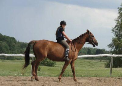 oboz-konie-2014-4-0099
