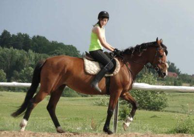 oboz-konie-2014-4-0101