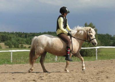 oboz-konie-2014-4-0107
