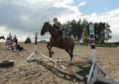 oboz-konie-2014-4-0116