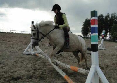 oboz-konie-2014-4-0117