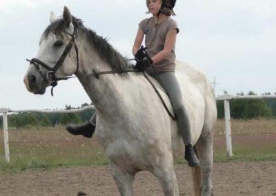 oboz-konie-2014-4-0125
