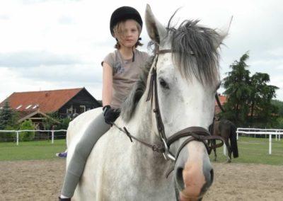 oboz-konie-2014-4-0127