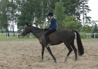 oboz-konie-2014-4-0128