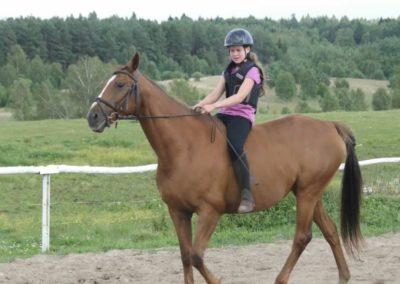 oboz-konie-2014-4-0129