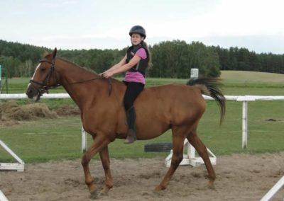 oboz-konie-2014-4-0133