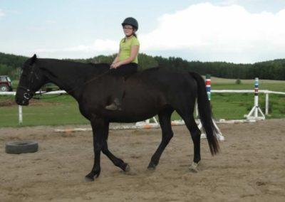 oboz-konie-2014-4-0139