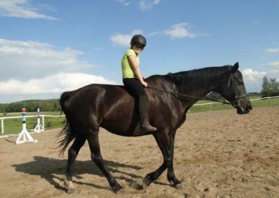 oboz-konie-2014-4-0146