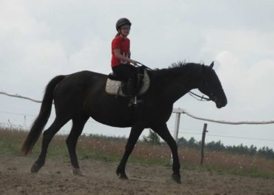 oboz-konie-2014-5-0001