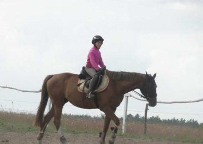 oboz-konie-2014-5-0002