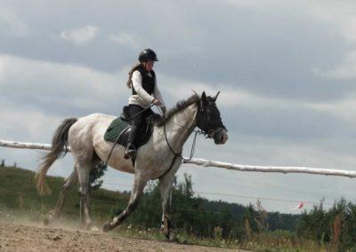 oboz-konie-2014-5-0005