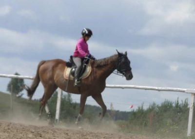 oboz-konie-2014-5-0006