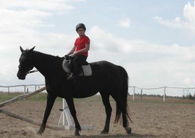oboz-konie-2014-5-0008