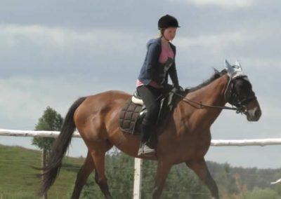 oboz-konie-2014-5-0011