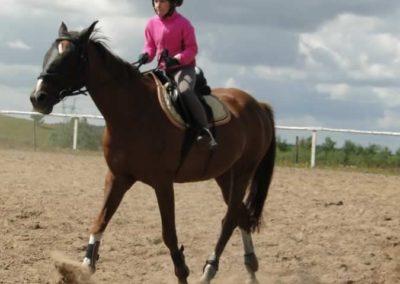 oboz-konie-2014-5-0012