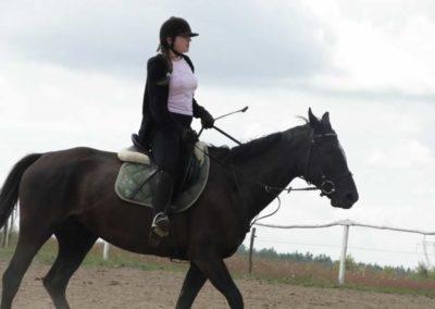 oboz-konie-2014-5-0015