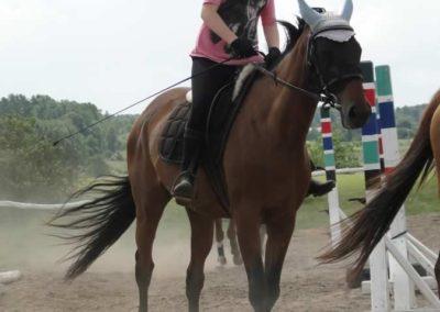 oboz-konie-2014-5-0016