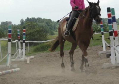 oboz-konie-2014-5-0018