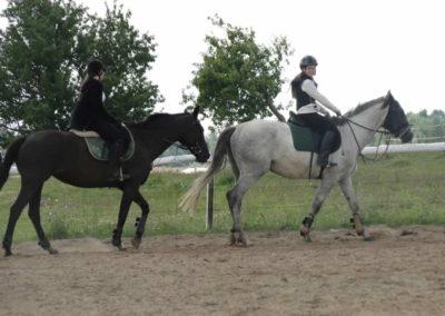 oboz-konie-2014-5-0021