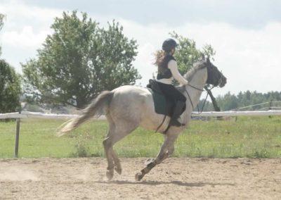 oboz-konie-2014-5-0029