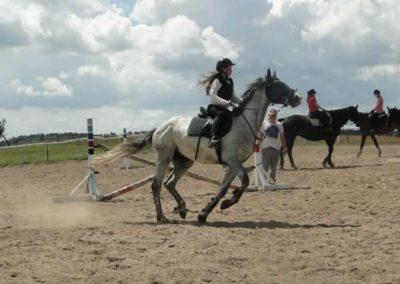 oboz-konie-2014-5-0031