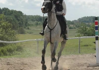 oboz-konie-2014-5-0032