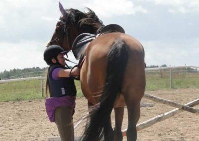 oboz-konie-2014-5-0033