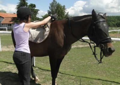 oboz-konie-2014-5-0034