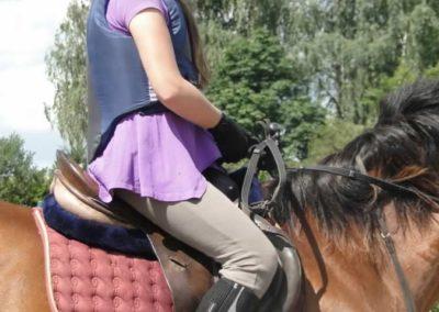 oboz-konie-2014-5-0037