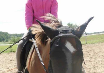 oboz-konie-2014-5-0042